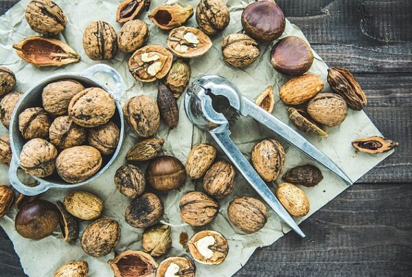 omega 3 fats a low fat vegan diet
